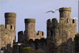 Conwy Castle............ by fogz, photography->castles/ruins gallery