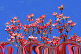 Dogwood Delights: A Liquefy by verenabloo, Photography->Manipulation gallery