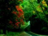 Serpentine by jojomercury, photography->manipulation gallery