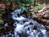 Fresh Spring Stream by OutdoorsGuy, photography->water gallery