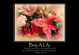 Lily Poster by LynEve, photography->flowers gallery