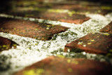 Bricks by rforres, photography->textures gallery