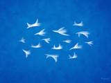 Flock by vladstudio, Illustrations->Digital gallery