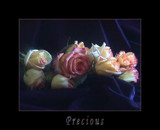 Precious by verenabloo, Photography->Still life gallery