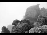 Sentinels by murungu, photography->nature gallery