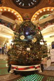 South Dakota State Christmas Tree by Nikoneer, holidays->christmas gallery
