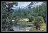 Glen in Yosemite by lythrum, photography->landscape gallery