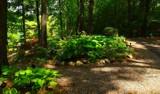 Hidden Gardens by tigger3, photography->gardens gallery