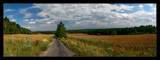 Country Lane Panorama by mia04, Photography->Landscape gallery