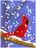 Cardinal in the Snow by bfrank, illustrations gallery