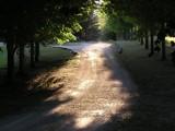 September Walk! by marilynjane, photography->landscape gallery