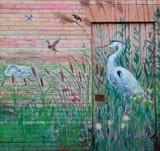 Avian Wall Art by mesmerized, photography->birds gallery