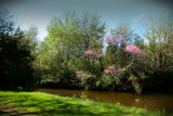 It's A Beautiful Day by tigger3, Photography->Landscape gallery