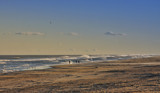 Assateague Island National Seashore by Jimbobedsel, photography->shorelines gallery