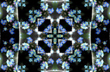 Forget-me-not by LynEve, photography->manipulation gallery