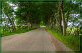 'Endless' Country Road by corngrowth, photography->landscape gallery