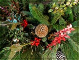Signs of the Season by trixxie17, holidays->christmas gallery