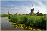 Kinderdijk 07 by corngrowth, Photography->mills gallery