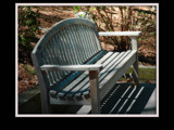 A Bench For Bob (Dunstickin) by cinny7, Photography->Sculpture gallery