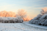 Frosty Morning by rob2001, Photography->Landscape gallery