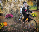 The Old Man by cynlee, holidays gallery