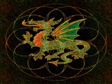 Dragon Alive by anawhisp, abstract gallery