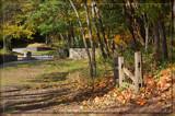 Autumn Sunlight by Jimbobedsel, photography->landscape gallery