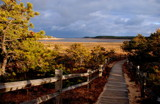 wellfleet landscape by solita17, Photography->Landscape gallery