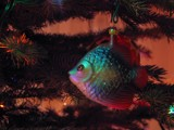 Christmas fish by ekowalska, Holidays->Christmas gallery