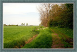 Walcheren Country Roads & Paths 08 by corngrowth, Photography->Landscape gallery