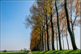 'Middle In The Nowhere' Perspective by corngrowth, photography->landscape gallery