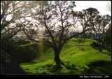 Atop Mount Eden by Lxin, Photography->Mountains gallery