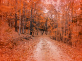 Freedom Road by jojomercury, Photography->Landscape gallery