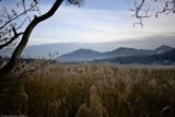 Peca by Mauntnbeika, Photography->Landscape gallery