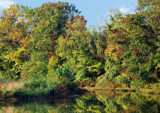 Pretty Pond -- Early Autumn Color by sharonva, photography->shorelines gallery