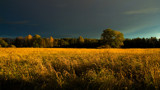 October afternoon by SEFA, photography->landscape gallery