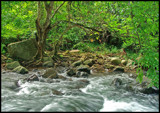Serene flow by priyanthab, Photography->Landscape gallery