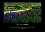 Wildflowers Poster by LynEve, photography->landscape gallery