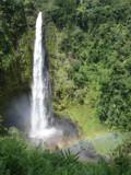 Akaka Falls by whttiger25, Photography->Waterfalls gallery