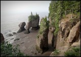 HOPEWELL ROCKS by GIGIBL, photography->nature gallery