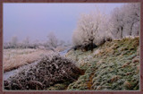 Winter In Zeeland 2009 (10) by corngrowth, Photography->Landscape gallery
