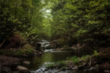 Babbling Brook by Eubeen, photography->landscape gallery