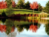 The Colors of a Pond! by marilynjane, Photography->Shorelines gallery