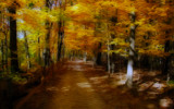 The Golden Way by casechaser, photography->manipulation gallery