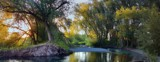 Logan River Walk 2 by nmsmith, photography->landscape gallery