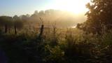 MorningLight by twinkel, photography->landscape gallery