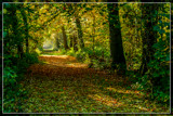 Only For Hikers 2 by corngrowth, photography->landscape gallery