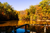 Autumn At Lindenwood by tigger3, photography->landscape gallery
