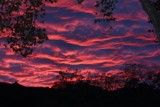 Alisal Sunset by lambchop, photography->sunset/rise gallery