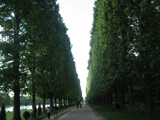 Versailles by mbe9, Photography->Landscape gallery